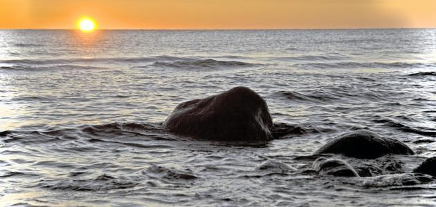 صورة خواطر عن البحر