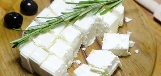صورة طريقة حفظ الجبنة البيضاء