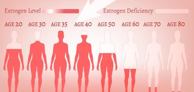 صورة ما هو دور هرمون الإستروجين