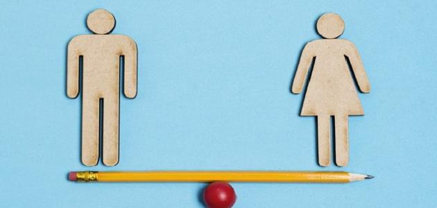 صورة مفهوم المساواة بين الرجل والمرأة