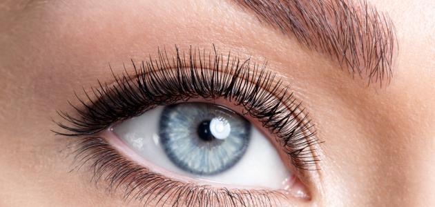 صورة كيفية تصفية بياض العين