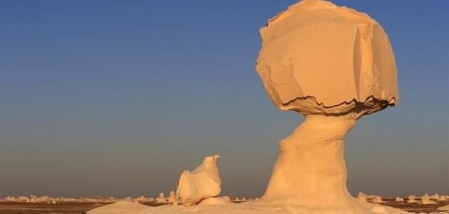 صورة أين تقع الصحراء الغربية فى مصر
