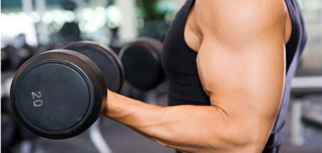 صورة كيفية زيادة الوزن بالرياضة