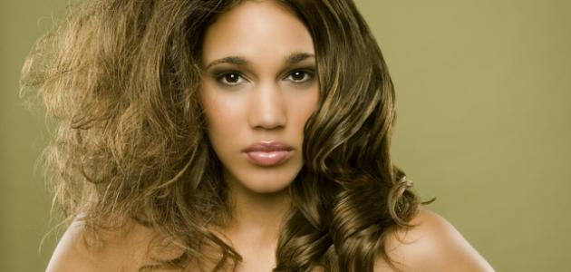 صورة جديد كيف يتم ترطيب الشعر الجاف