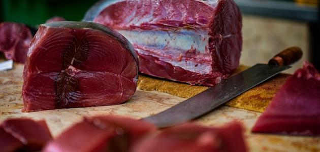 صورة جديد كيفية طبخ سمك التونة الطازج