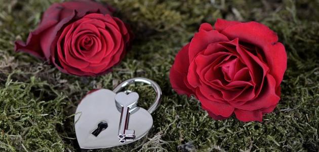 صورة جديد أشعار على الحب