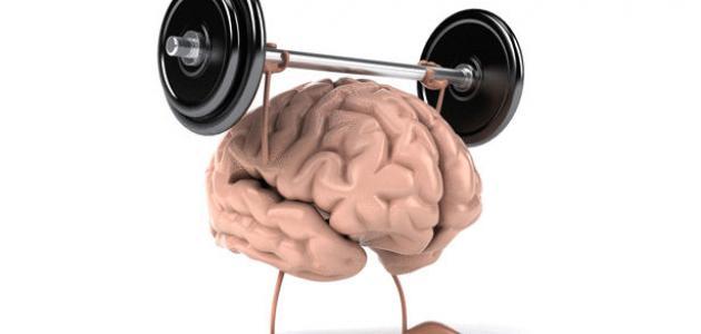 صورة جديد بحث عن الذاكرة