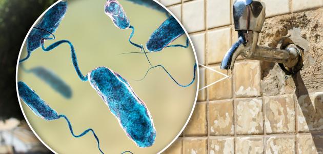 صورة جديد ما هي الأمراض التي يسببها تلوث المياه