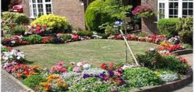 صورة جديد كيف تزرع حديقة المنزل