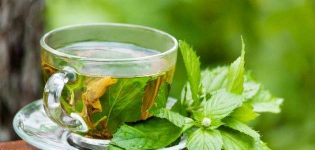 صورة جديد طريقة شاي النعناع
