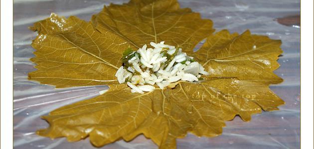 صورة جديد طريقة لف ورق العنب