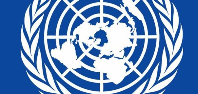 صورة جديد ما هي حقوق الإنسان