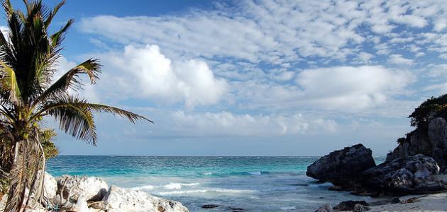 صورة جديد ما هي جزر الكاريبي