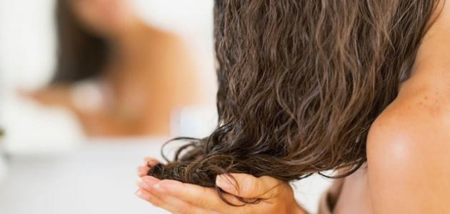 صورة جديد خصائص الشعر الدهني