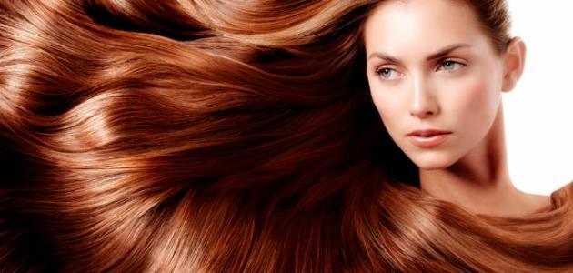 صورة جديد كيف أصبغ شعري طبيعي