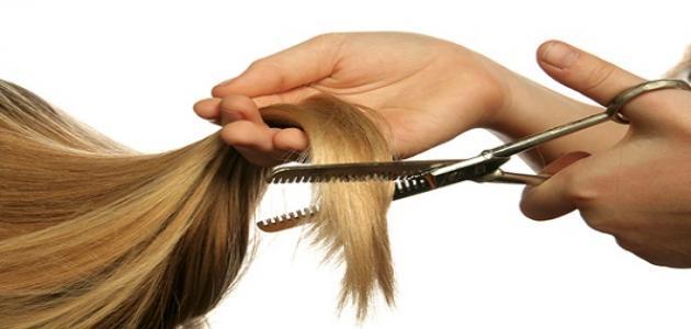 صورة جديد كيف أعالج تقصف الشعر