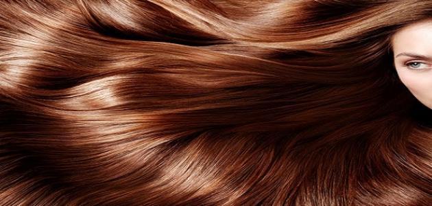 صورة جديد طريقة صبغ الشعر بني فاتح