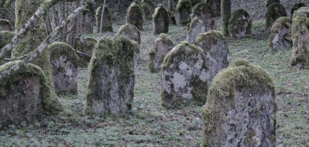 صورة جديد ما هو نعيم القبر وعذابه