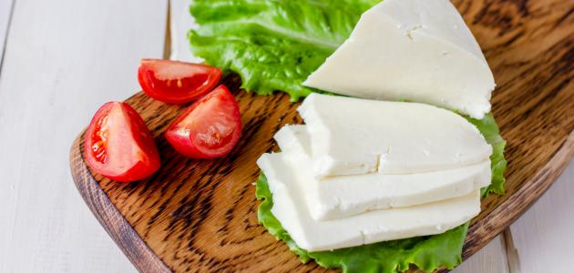 صورة جديد فوائد الجبنة البيضاء