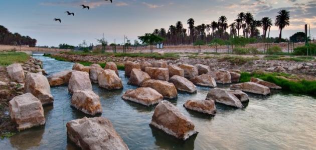 صورة جديد أين يقع وادي حنيفة