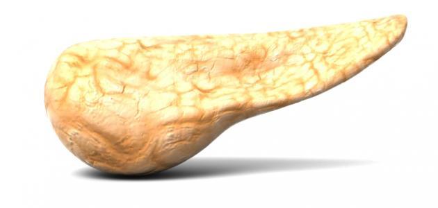 صورة جديد تضخم البنكرياس