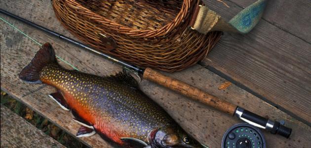 صورة جديد أدوات الصيد