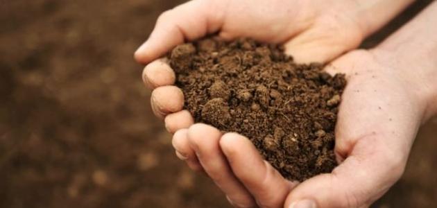 صورة جديد مواصفات التربة الزراعية