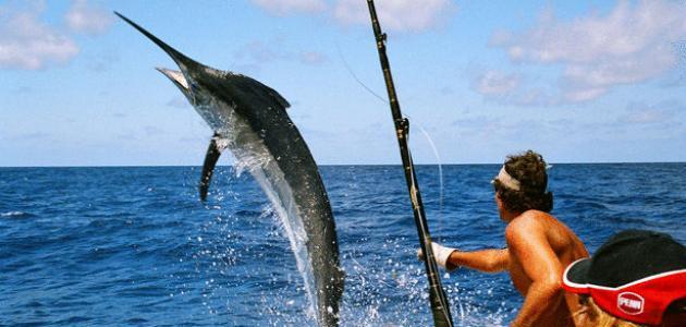 صورة جديد أفضل طريقة لصيد السمك بالسنارة