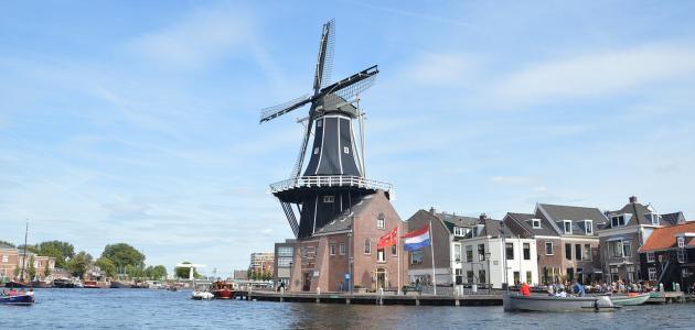 صورة جديد مدينة هارلم الهولندية