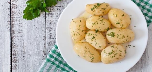 صورة جديد ما هو رجيم البطاطس المسلوقة