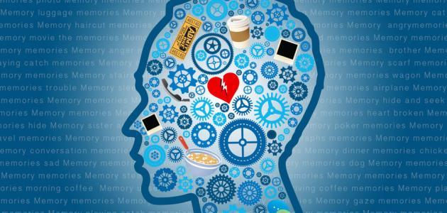صورة جديد مفهوم علم النفس المعرفي
