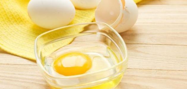 صورة جديد فوائد البيض والخل للشعر
