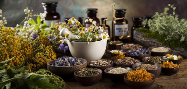 صورة جديد فوائد الأعشاب الطبيعية