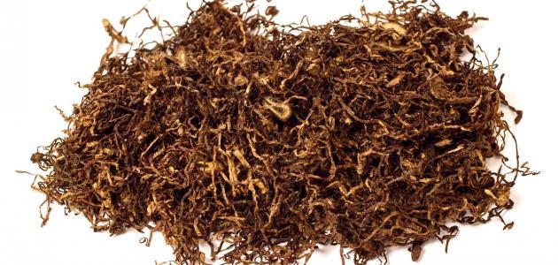 صورة جديد مكونات التبغ وأضراره