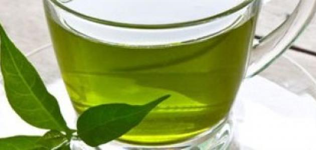 صورة جديد فوائد زيت الشاي الأخضر للشعر