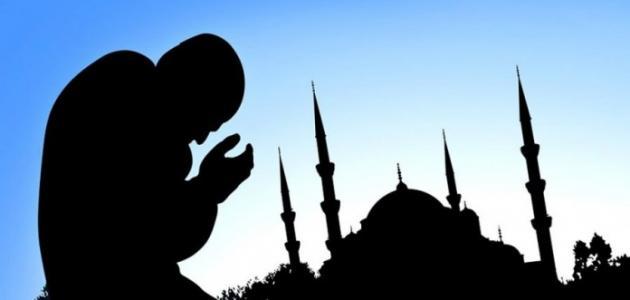 صورة جديد عدد الصلوات في اليوم