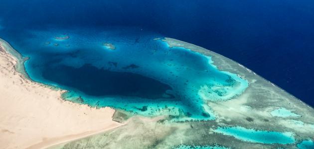 صورة جديد جزر البحر الأحمر