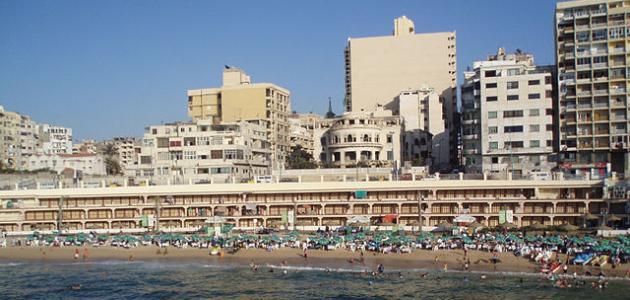 صورة جديد أين تذهب في الإسكندرية