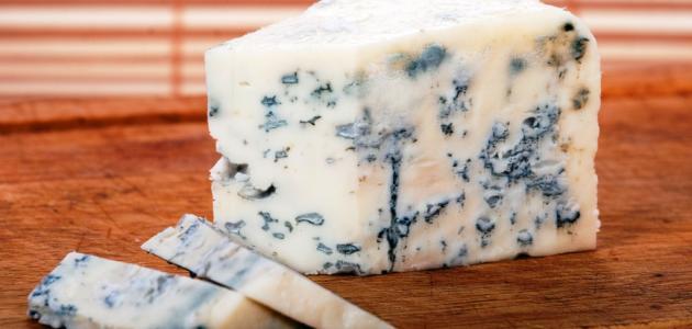 صورة جديد فوائد الجبنة الزرقاء
