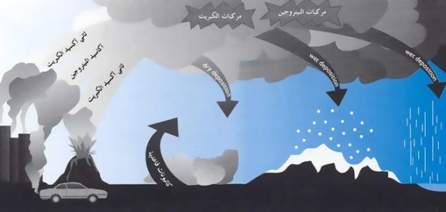 صورة جديد كيف يتكون المطر
