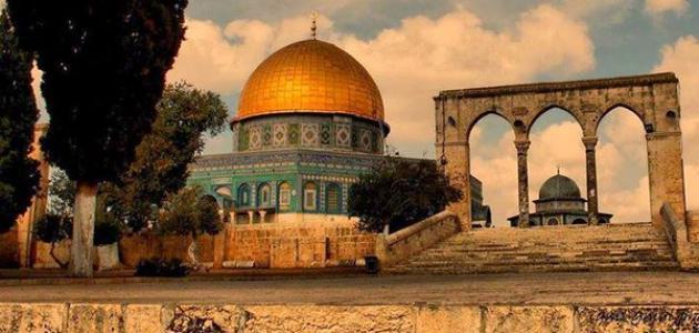 صورة جديد معلومات ثقافية عن فلسطين