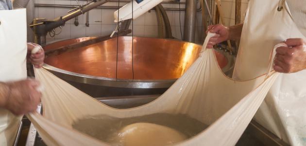 صورة جديد طريقة صنع الجبن في المنزل