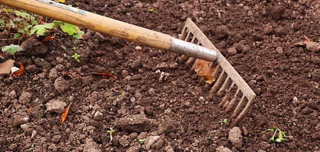 صورة جديد كيفية التخلص من ملوحة التربة