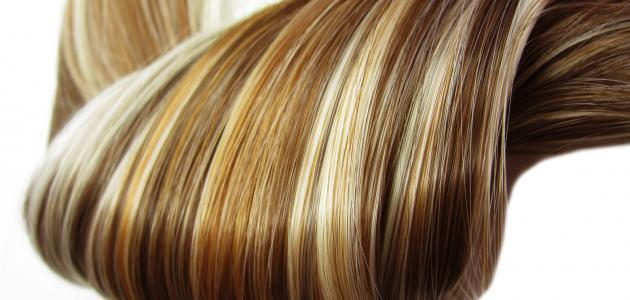 صورة جديد كيفية ترطيب الشعر الجاف