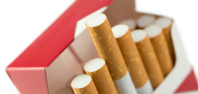 صورة جديد من اخترع السجائر