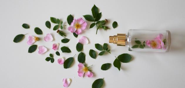 صورة جديد كيفية صنع عطر من الورد