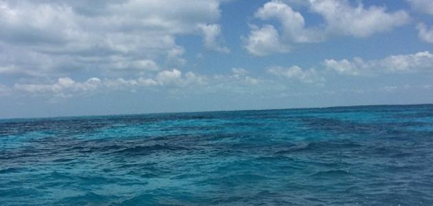 صورة جديد كيف تتحرك مياه المحيطات
