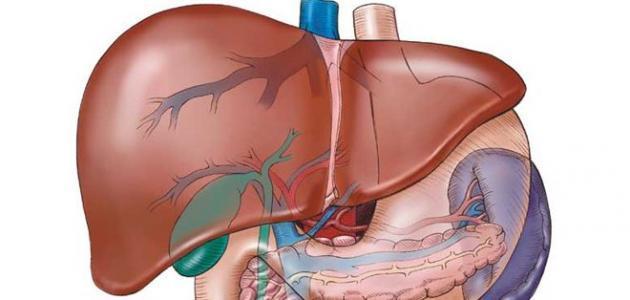 صورة جديد أعراض الإصابة بفيروس سي النشط
