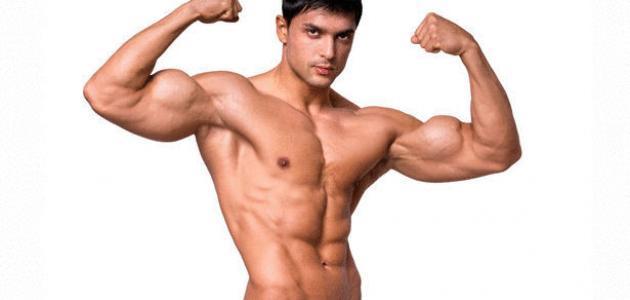 صورة جديد قوة العضلات