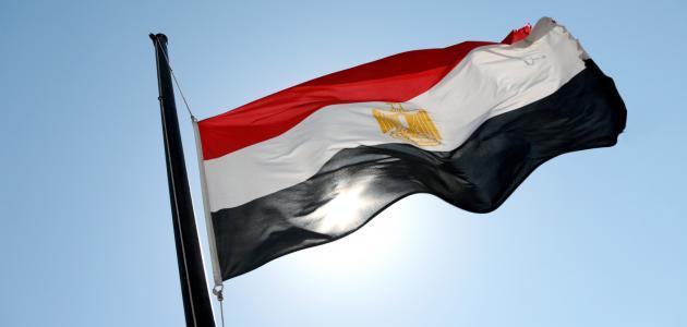 صورة جديد أكبر دولة عربية من حيث السكان